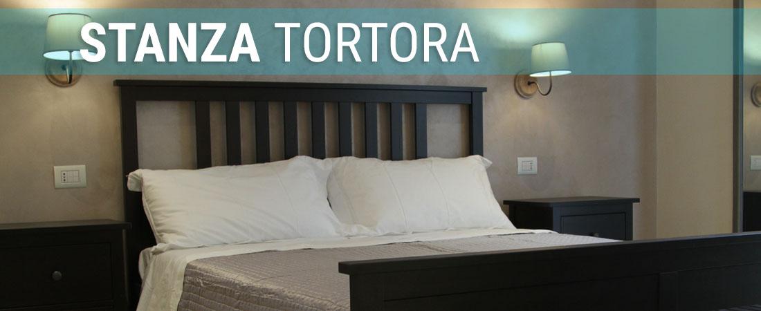 Stanza_tortora_puls01
